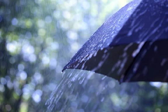 Синоптики прогнозируют кратковременные дожди с грозами в Тамбовской области