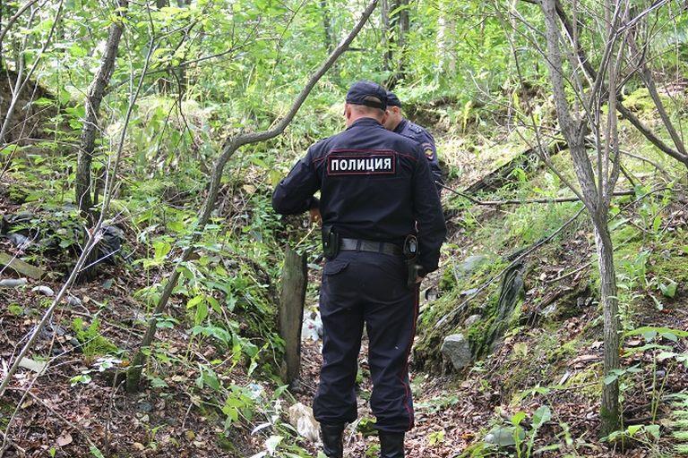 В Рассказовском лесу грибником обнаружен человеческий скелет