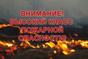В регионе ожидается IV класс пожарной опасности. Будьте осторожны с огнем!