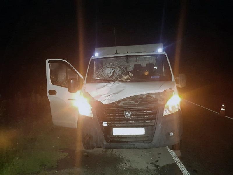 В Тамбовской области ГАЗель насмерть сбила пешехода