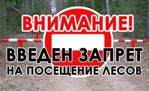 Внимание! Посещение лесных массивов в некоторых районах Притамбовья запрещено
