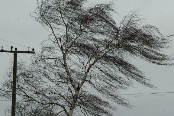 МЧС предупреждает об усилении ветра 19 сентября