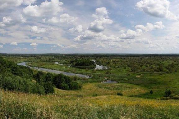 Тамбовская область вновь стала лидером экологического рейтинга по итогам лета