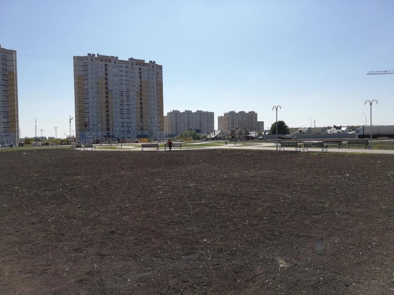В Олимпийском парке Тамбова в рамках строительства на дополнительные 100 млн рублей поставили компактную сцену и выложили олимпийские кольца из тротуарной плитки