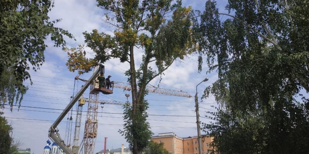 В Тамбове начался ремонт улицы Архиепископа Луки