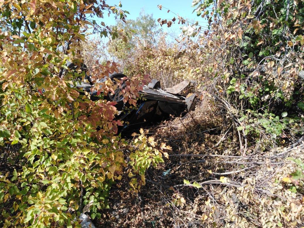 В Тамбовской области после обнаружения пропавшей молодой пары возбуждено уголовное дело по статье «Убийство»