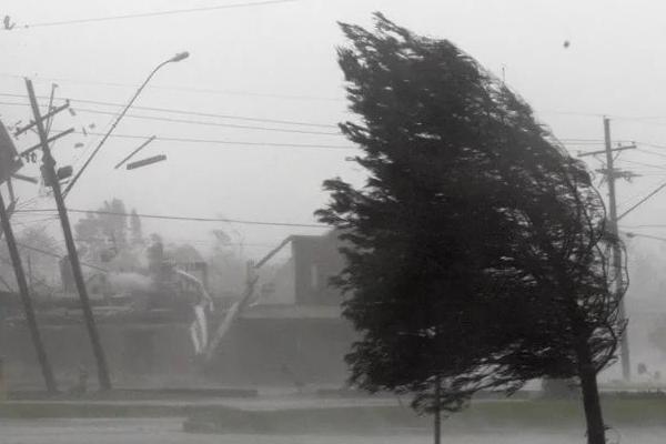 МЧС предупреждает об усилении ветра в ближайшие часы