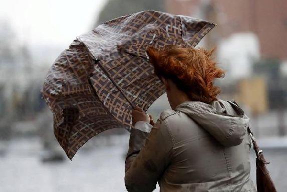 МЧС предупреждает об усилении ветра в Тамбовской области