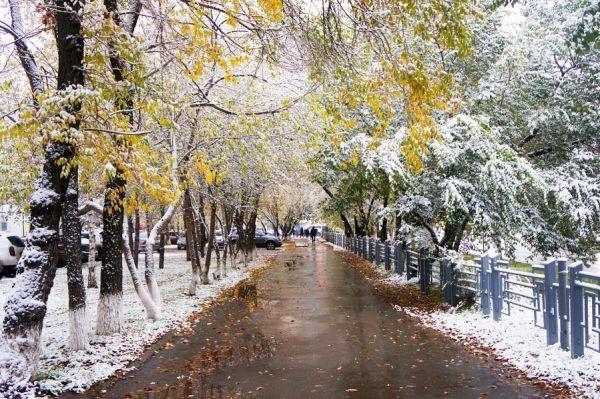 Синоптики предупредили о морозах и мокром снеге в Тамбове