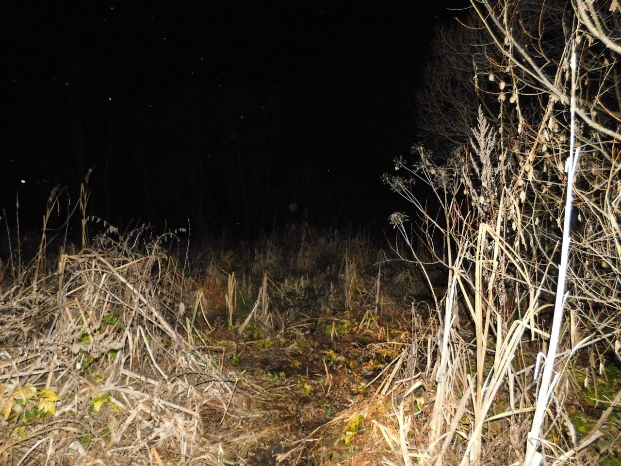 В Сампурском районе нашли тело пропавшего ранее 15-летнего подростка