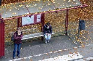 Насевере Тамбова установят триавтобусные остановки