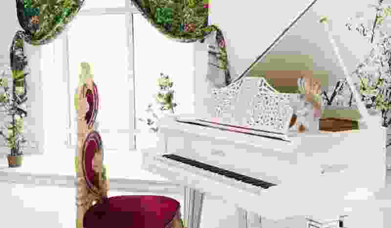 В Тамбове в детскую школу искусств никак не могут поставить рояль за 3 млн рублей