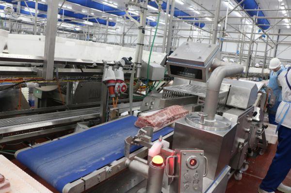 В Тамбовской области производители понесли убытки из-за хорошего урожая сахарной свёклы