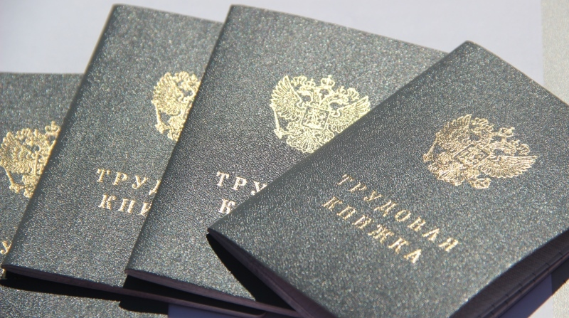 В Тамбовской области прокуратура добивается блокировки сайта по продаже фиктивных трудовых книжек