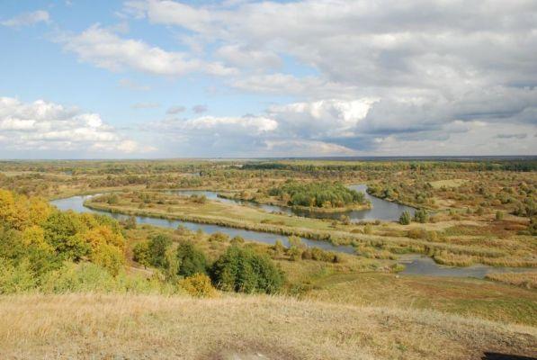 В Тамбовской области создадут новые заповедные территории