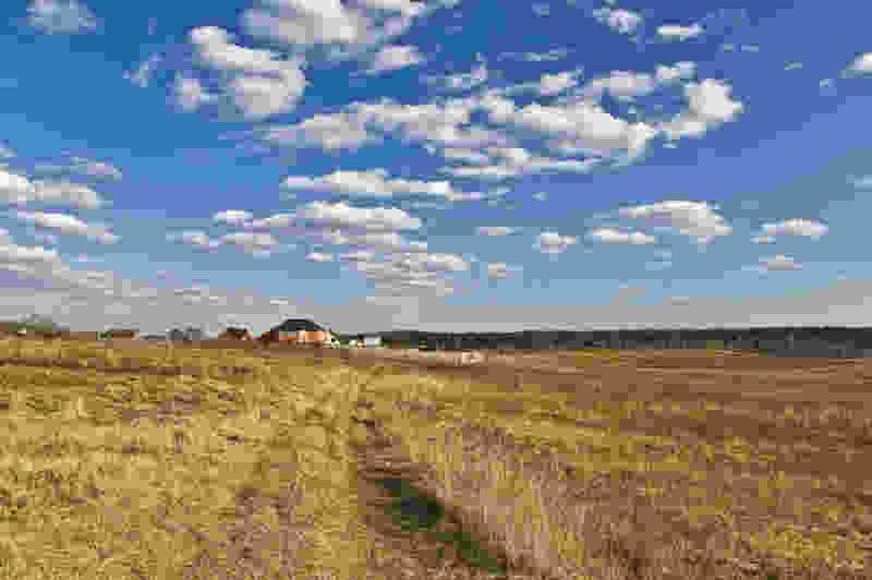 В Тамбовском районе агрофирму оштрафовали на полмиллиона рублей за заброшенные поля