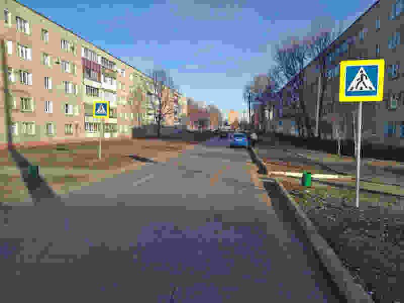 В Тамбовском районе мужчина на иномарке сбил женщину на пешеходном переходе