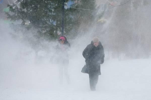 МЧС предупреждает: на Тамбовскую область надвигается сильный ветер