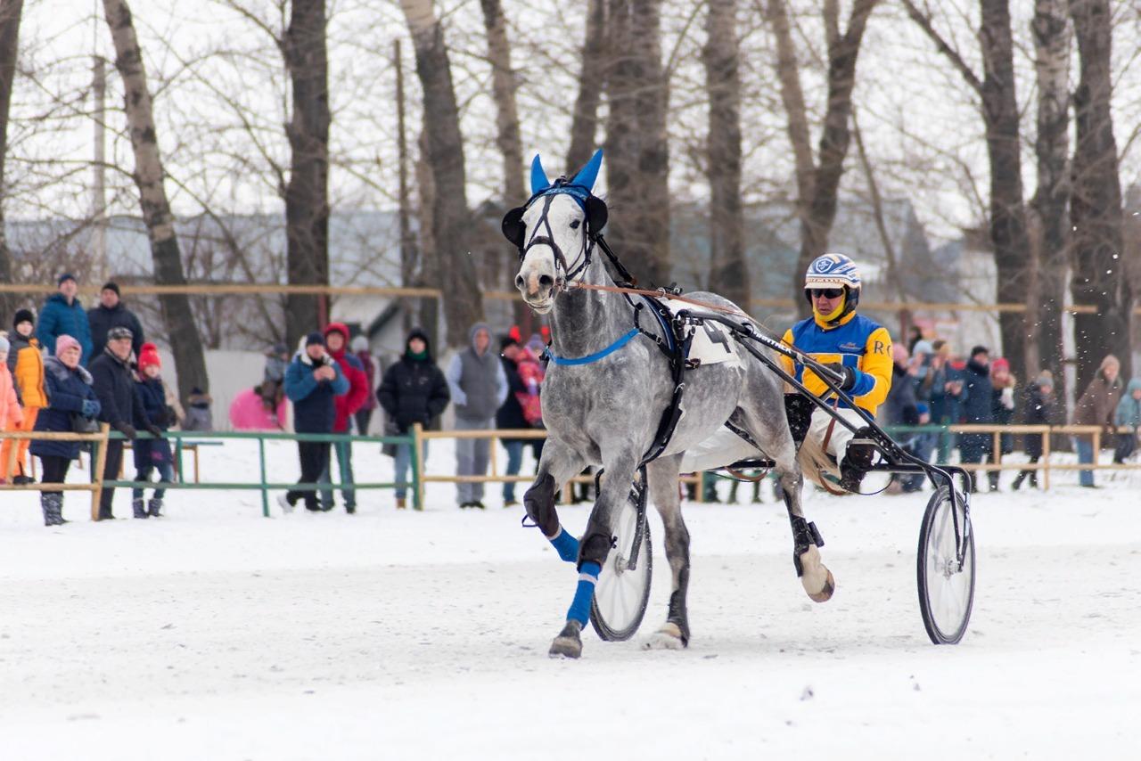 На Тамбовском ипподроме стартовал зимний беговой сезон