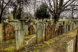 ПодТамбовом вынесли приговор осквернившей могилы девушке