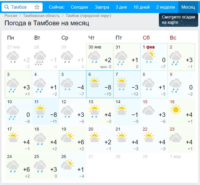 В Тамбове всё ещё ищут новое место под горку для катания вместо засыпанной в Олимпийском парке: благо, зимы не предвидится