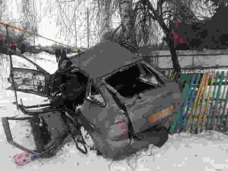 В Тамбовской области «Лада» слетела с дороги в кювет и врезалась в дерево: водитель погиб