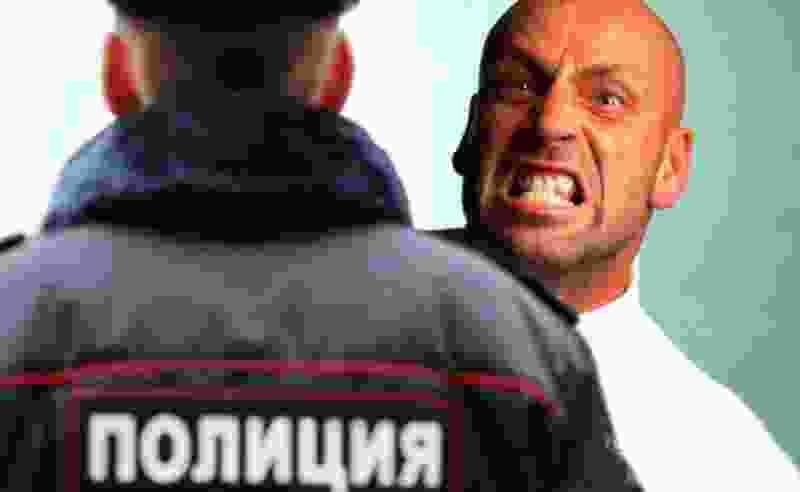 Житель Тамбовской области, обматеривший полицейского, приговорен к семи месяцам исправительных работ