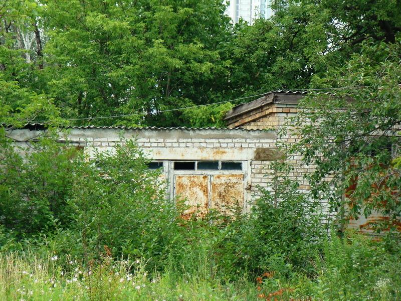 Тамбовчанин в подвале своего гаража разбил теплицу для выращивания конопли