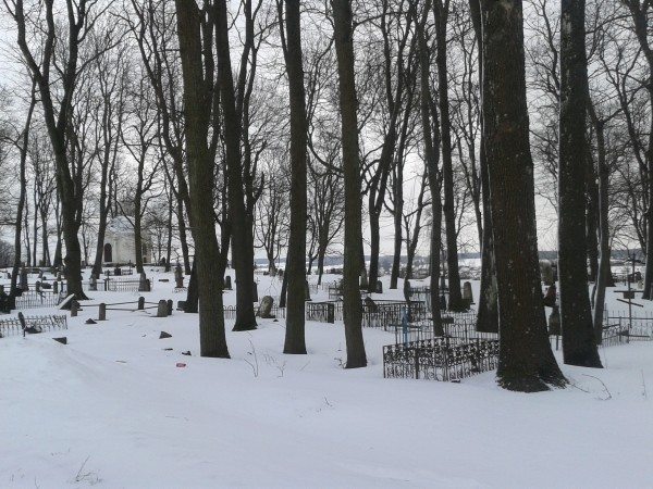 В Тамбове задержали мужчину, который несколько дней назад изнасиловал несовершеннолетнюю девочку рядом с кладбищем