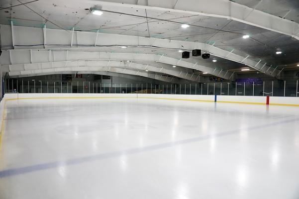 ЧМ-2020 по хоккею отменен из-за коронавируса