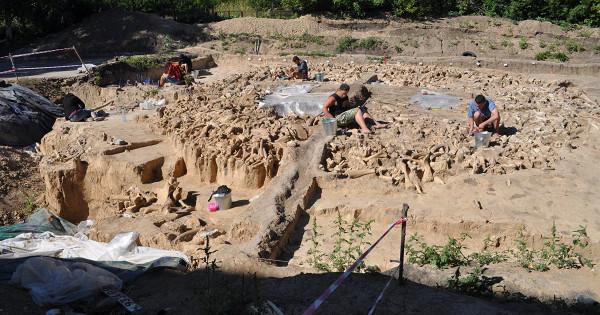 ПодВоронежем найдена постройка изкостей мамонтов