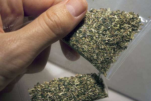 У жителя Тамбовской области обнаружена марихуана