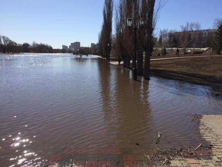 В ближайшие дни уровень реки Цны поднимется до 3 метров
