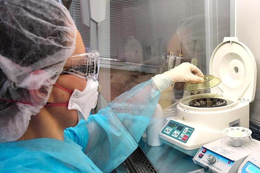 В конце 2020 года в России могут внедрить вакцину от коронавируса