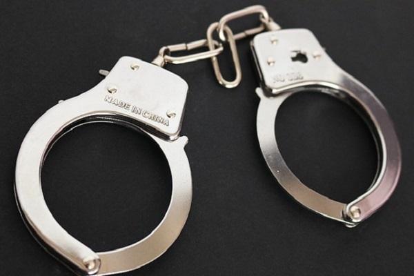 В Москве задержан тамбовчанин, ворующий вещи из аэропорта