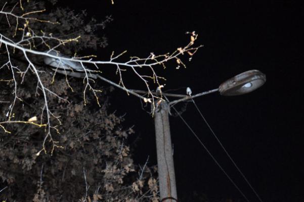 В нескольких населенных пунктах Бондарского района отсутствует уличное освещение