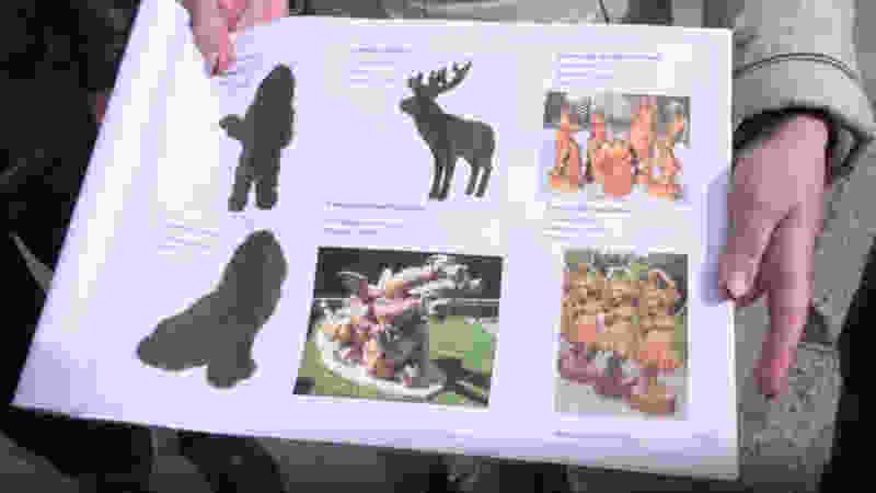 Деревянный детский городок с драконом на Набережной снесли