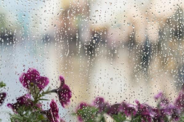 """""""Не май месяц"""": синоптики рассказали о погоде в Тамбове на ближайшие дни"""