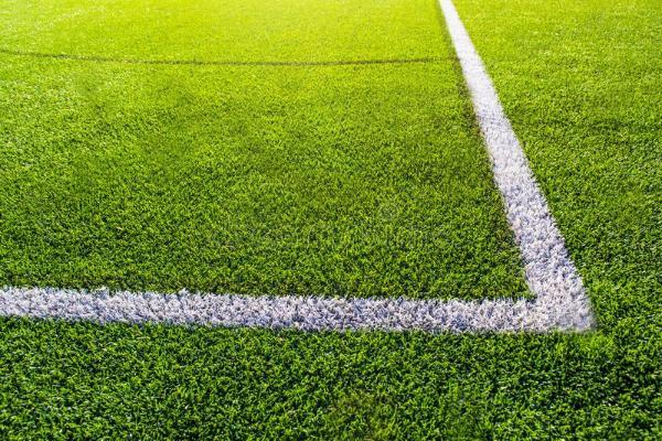Тамбовская область получит искусственное покрытие для футбольного поля