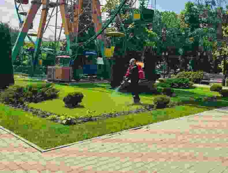 Тамбовский парк культуры и отдыха обработали от клещей