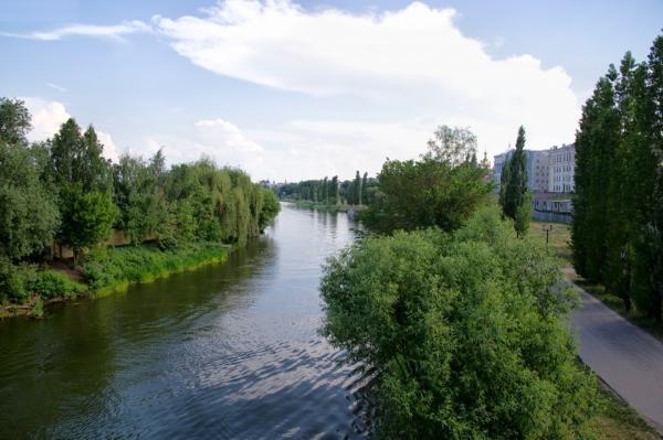 В Тамбове планируют расчистить 13-километровый участок Цны