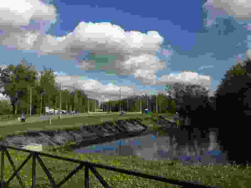 В Тамбовской области число протоколов за нарушение самоизоляции перевалило за тысячу