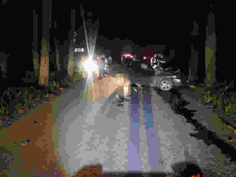 В Тамбовской области легковушка въехала в дерево: водитель погиб