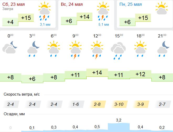В выходные погода в Тамбове останется прохладной