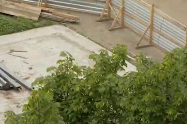 Тамбовцы отстаивают зеленую зону всвоем дворе