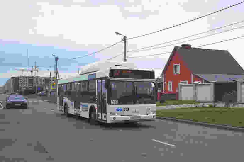 В Тамбове по маршрутам №56 и №57 пустят дополнительные автобусы