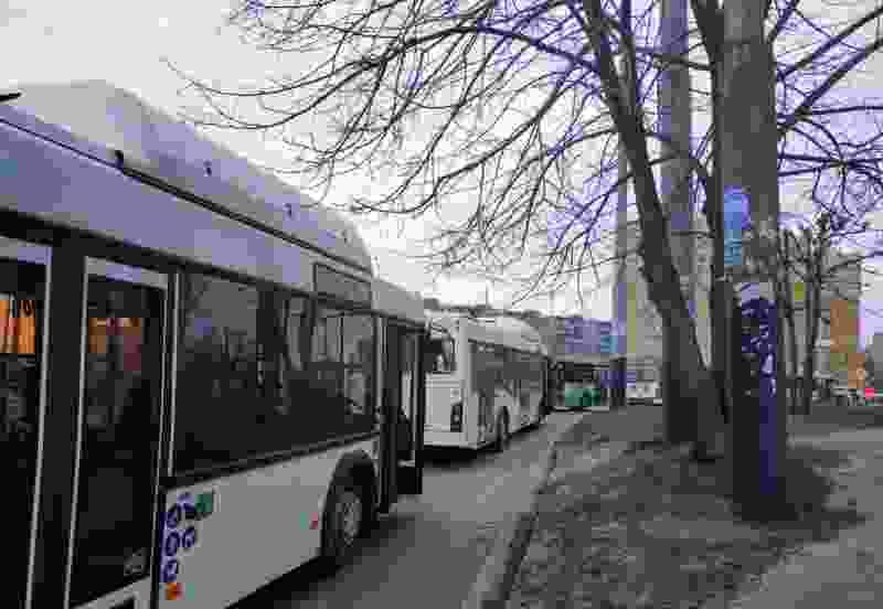 В Тамбове пустили два дополнительных автобуса, которые соединяют центр и север