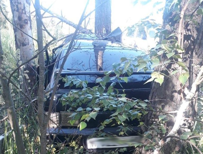 В Тамбовской области подросток на «Ладе» без прав помчался по встречной и врезался в дерево