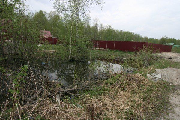 Апелляция обязала администрацию Тамбовского района предоставить землю многодетной семье