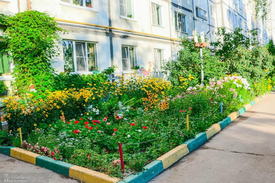 Благоустройство дворовых территорий в Тамбовской области планируют завершить до 15 сентября